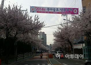 부산 서구 서대신4동, '꽃마을로 벚꽃축제' 내달 3~4일 개최