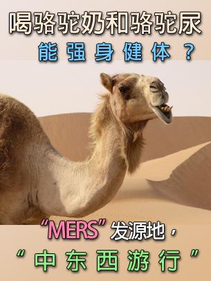 饮用骆驼奶和骆驼尿能强身健体?