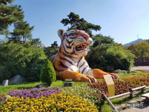 首尔大公园动物园正门入口处的老虎雕塑威风凛凛,迎接着前来到