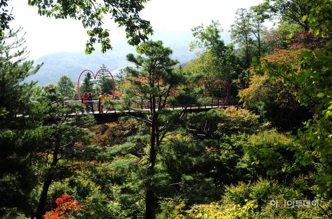 여행/화담숲 약속의 다리