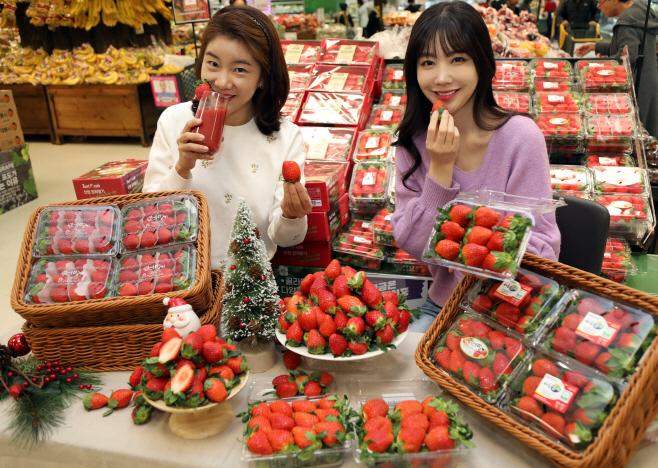 이마트 겨울 딸기 1