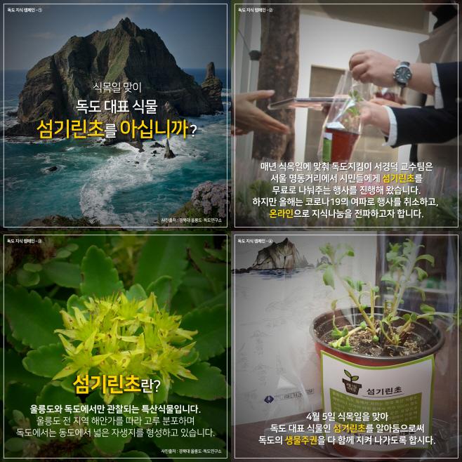 식목일섬기린초-1