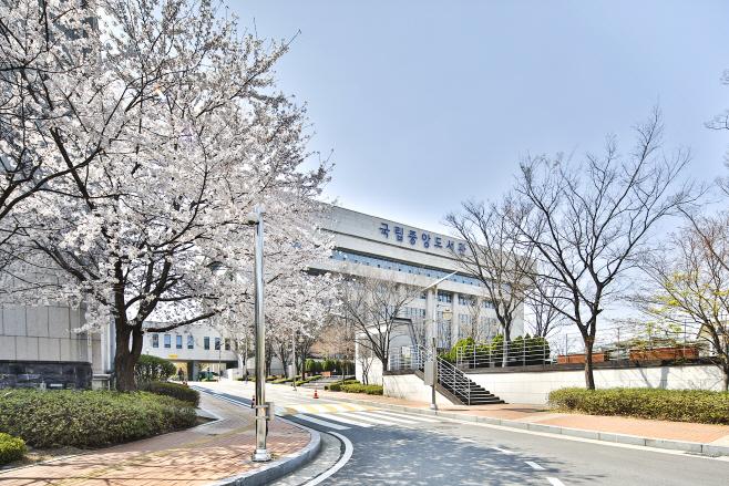 200403_국립중앙도서관 전경(봄꽃)