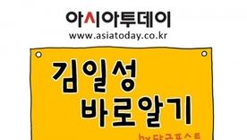 <카툰> ⑥ 응답하라! 진짜 김일성