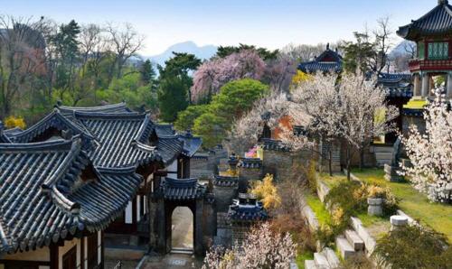 봄꽃 구경하기 좋은 궁궐·왕릉은 어디?