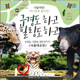 '서울여행! 1석 2조로 즐기자' 구경 하고 힐링도 하고 '서울대공원'
