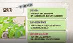 모링가, 비타민·무기질·아미노산 등 다량 함유 '혈관청소..