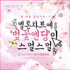 멜론차트에 '벚꽃엔딩'이 스멀스멀…2019 전국 벚꽃축제