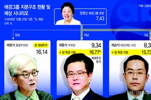 애경그룹 후계구도 변동성 확대되나…장영신 회장 복심은 어디로