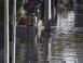 태풍 하기비스 일본 강타…10명사망