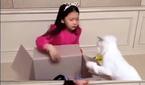 """구사랑, 고양이 학대 논란…母 """"아이 울면서 반성…잘 가.."""