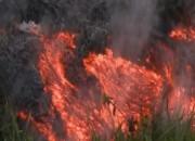 하와이 용암 분출 '대피령'