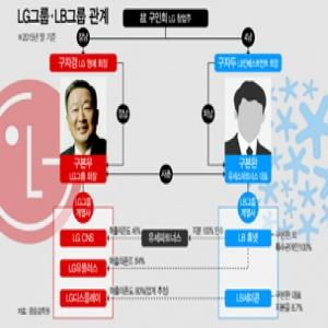 방계家 먹여살리는 LG…사촌 LB그룹 성장 '버팀목'