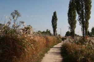 가을정취 만끽할 걷기 좋은 한강길 5곳은 어디?