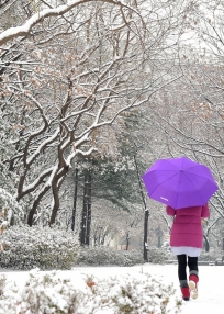 서울 올겨울 첫 대설주의보…눈 옷 갈아입은 도심