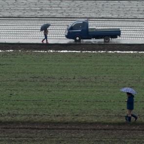 강진 들판에 내리는 겨울단비에 활짝웃는 농부