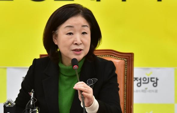 발언하는 심상정 정개특위 위원장