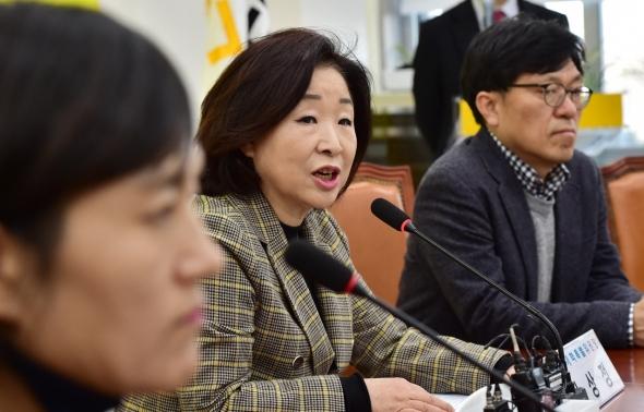 발언하는 심상정 정개특위위원장