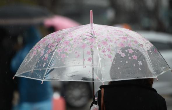 봄비와 꽃우산