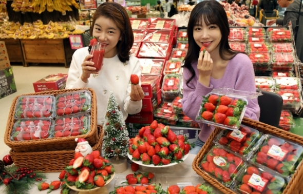 """""""벌써 딸기가?""""…이마트, 겨울딸기 1팩 9800원"""