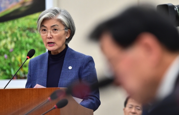 국회 외통위 현안보고하는 강경화 외교부 장관