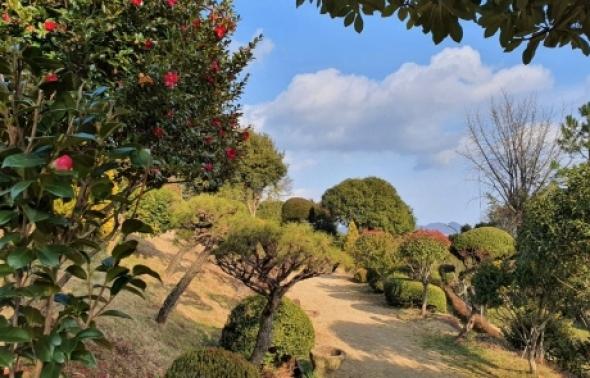 사계절 꽃이 지지 않는 '보성 초암정원'