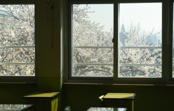 텅 빈 교실에 찾아온 봄