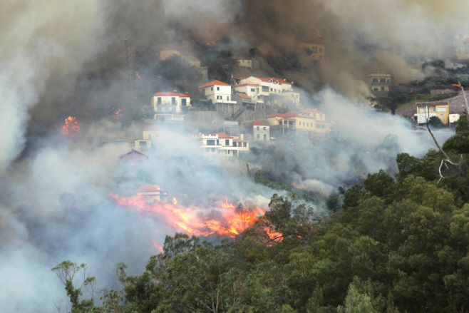 PORTUGAL-WILDFIRE/ <YONHAP NO-1280> (REUTERS)
