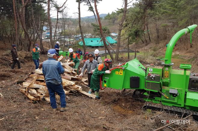 2019년 소나무재선충병 완전방제 총력