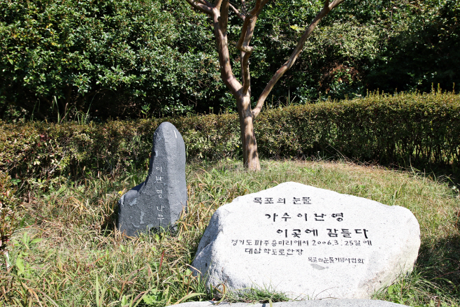 여행/ 이난영이 수목장으로 잠들어 있는 배롱나무