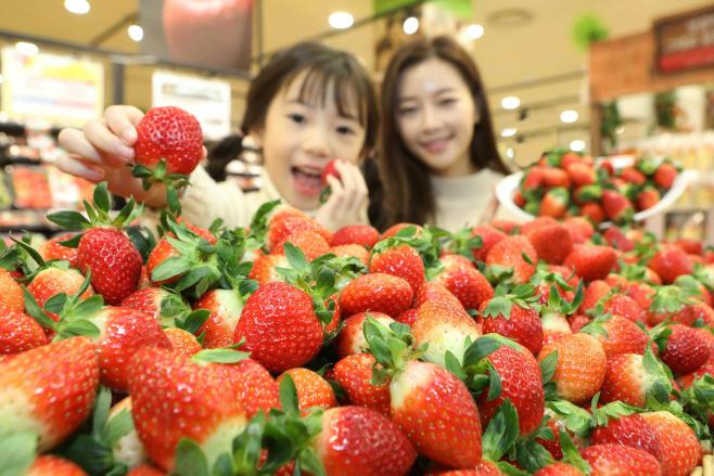 (19-12-11) 딸기의 계절 겨울이 돌아왔다!! (가로2)