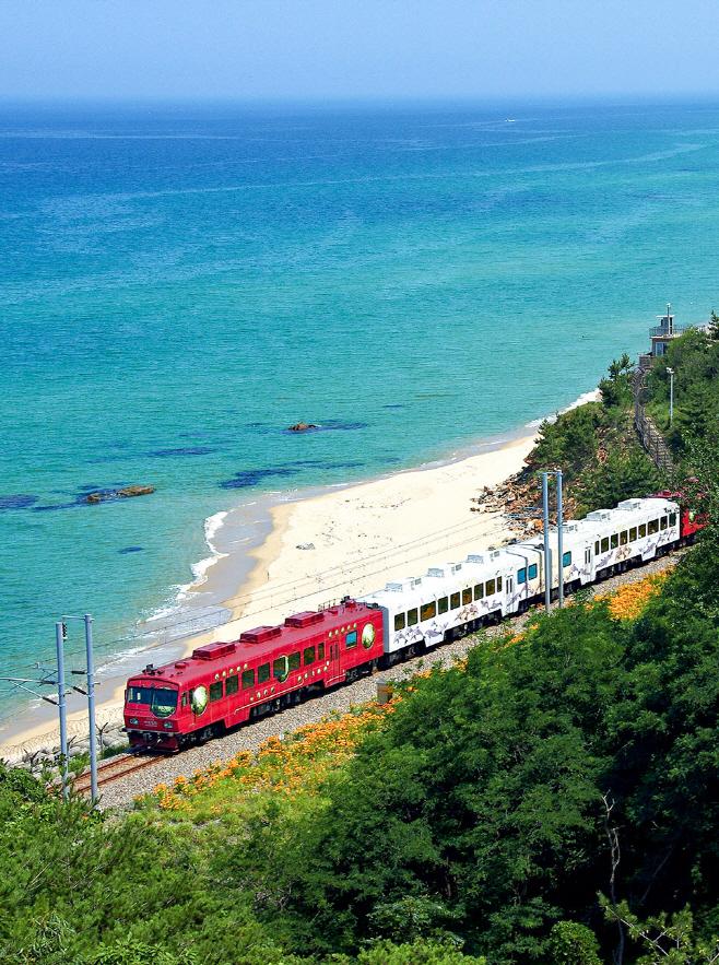 여행/ 바다열차