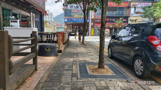 김해시 보행자 친화적 가로수길 조성-진영 보호판 사진 3