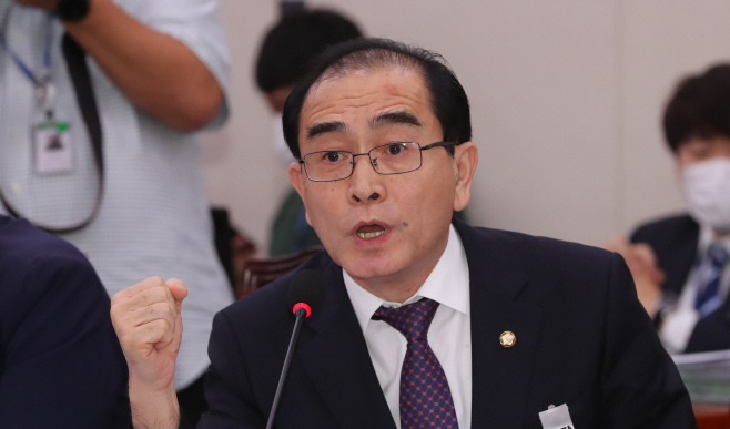 대북 전단 관련 질의하는 태영호 의원