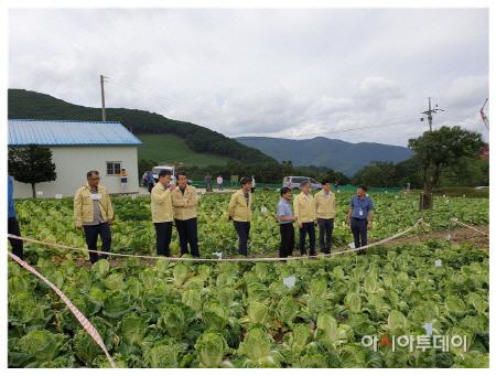 태백 매봉산지구 점검