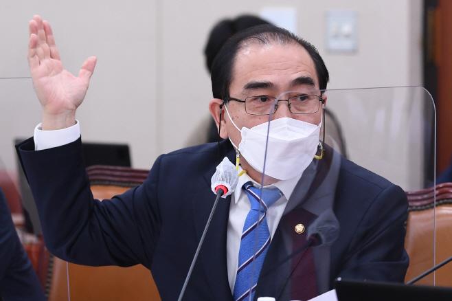 질의하는 국민의힘 태영호 의원<YONHAP NO-3382>