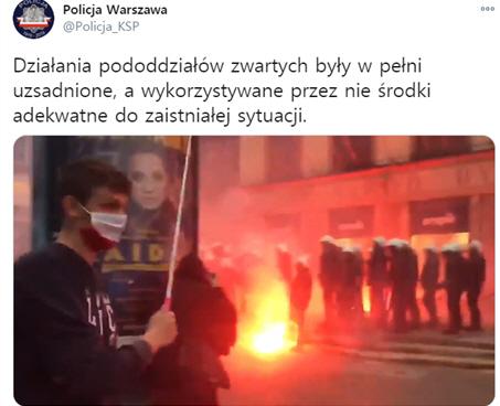 폴란드 독립 기념일