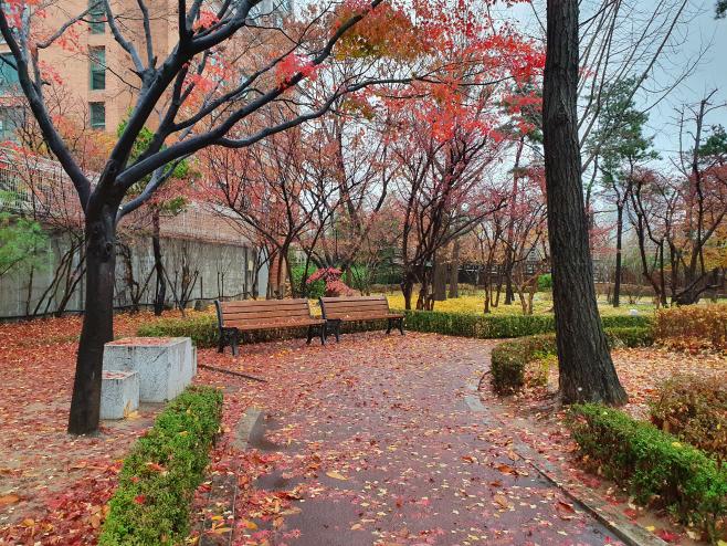 소설 절기에세이 앙카라 공원