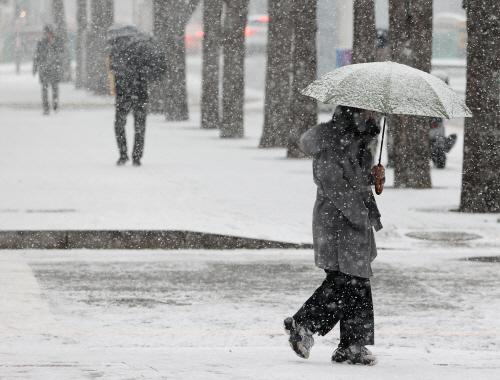 서울에 눈 펑펑