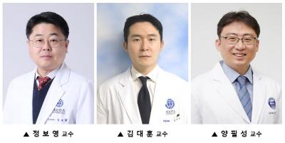 정보영 김대훈 양필성 교수