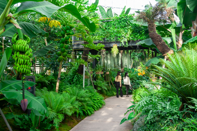 사본 -국립세종수목원 3 (1)