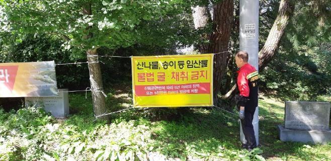 (6)임산물_불법채취_금지