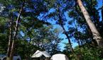 가을날 로맨틱 '힐링'...오토캠핑 여행