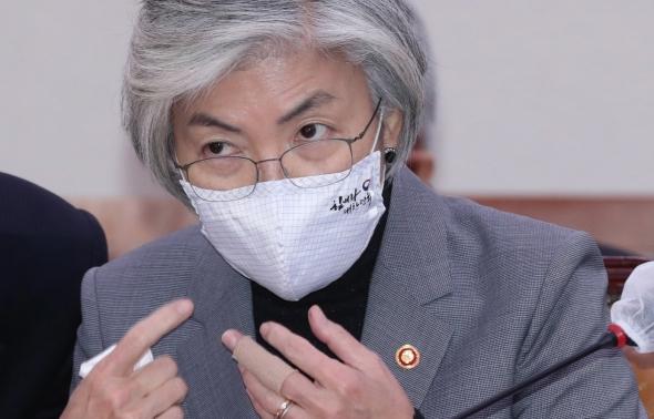 강경화 외교부 장관 국회 외통위 출석